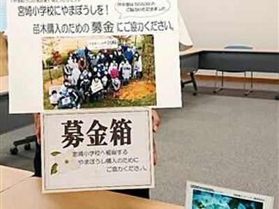 「ヤマボウシ植樹を」募金呼び掛け卓上カレンダー、福井県越前町