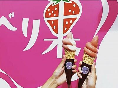 勝山市の道の駅にいちごアイス専門店「べり果」がオススメ 12月からイチゴ狩りもオープン【ふくジェンヌ】