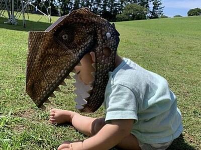 恐竜のリアルお面、子どものお土産に注目 福井発「かぶ~るくん」、実は段ボール【ふくジェンヌ】