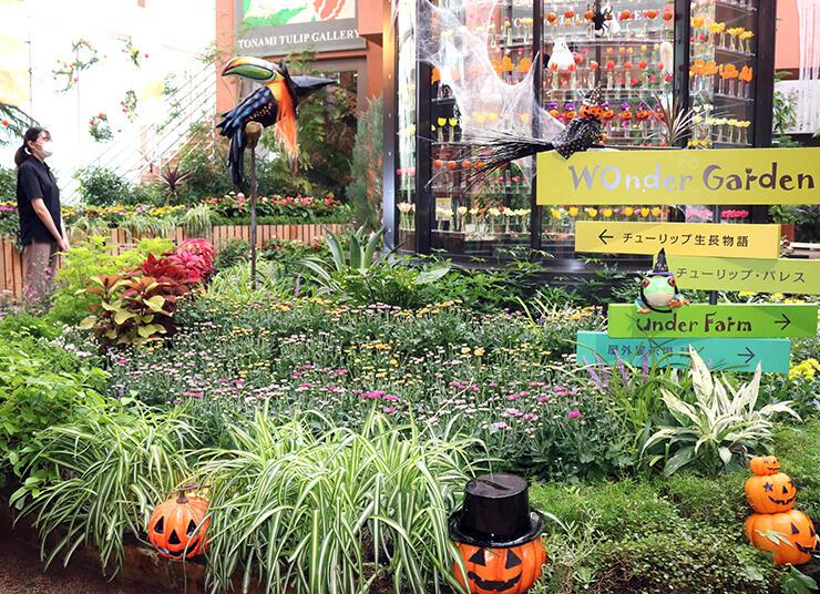 キクを中心にした花々とハロウィーンの装飾で彩られた会場=チューリップ四季彩館