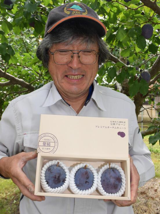 10月1日から販売する「紫稀」とほぼ同じ大きさの町産プルーンを入れた紫稀専用の包装箱