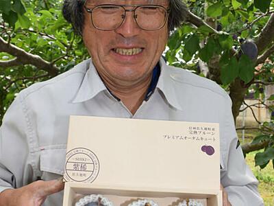 「紫稀」ブランドで販売へ 佐久穂のプルーン