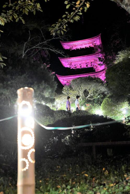 参道に並んだ竹灯籠と、さまざまな色で浮かび上がった三重塔