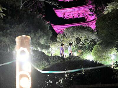 夜の参道、浮かぶ国宝 青木の大法寺