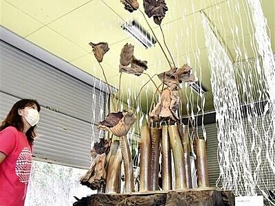 生け花、竹のインスタレーション... 故勅使河原さん芸術祭