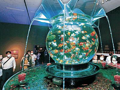 21世紀美術館 金魚と光が織りなす美